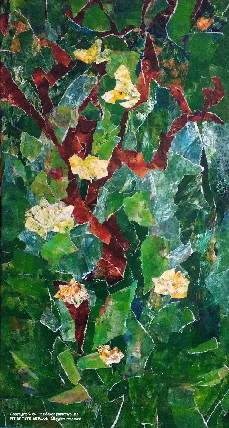 amazon rainforest plants collage. in the amazon rainforest plants collage e